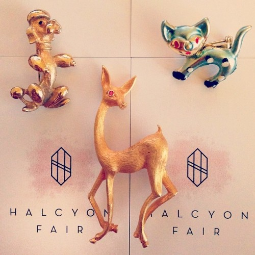 Photo Credits: Halcyon Fair