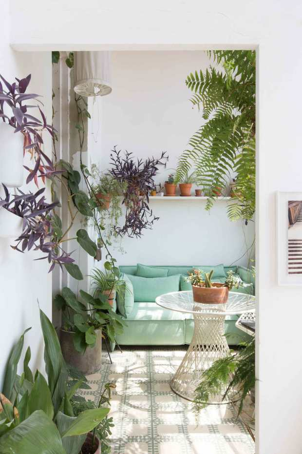 Greenterior-Plant-Loving-Creatives-and-Their-Homes-Open-House-Yellowtrace-07
